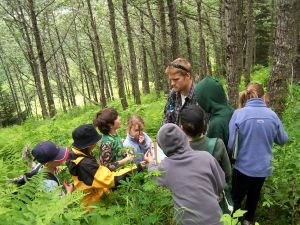 cottonwood forest talk